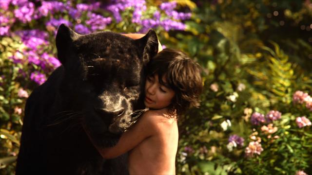 The Jungle Book - Movie Trailers - iTunes