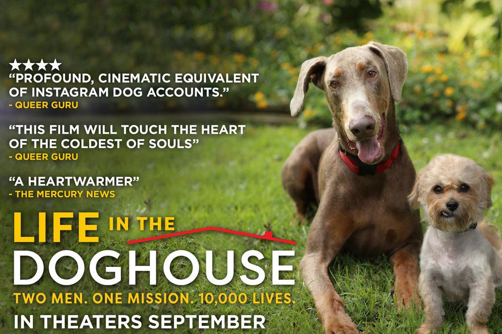 同一汪檐下 Life in the Doghouse/