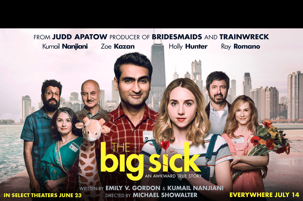 The Big Sick/大病/爱情昏迷中(台)/情人眼里巴基斯(港)