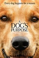 A Dog's Purpose - Trailer